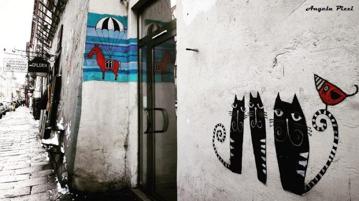 Kazimierz: quartiere popolato in prevalenza dalla comunità ebraica. I muri delle strade sono caratterizzati da piccoli graffiti belllissimi