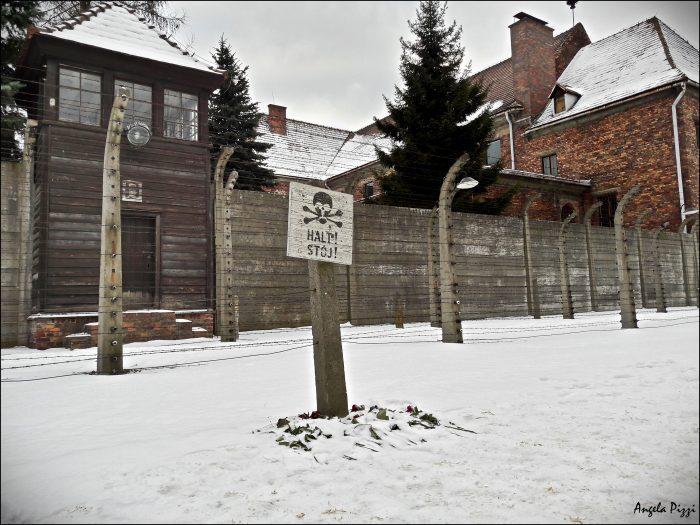 Raggiungere Auschwitz partendo da Cracovia. Cartello con disegnato un teschio che indica il divieto di oltrepassare. Ai piedi un fascio di rose rosse