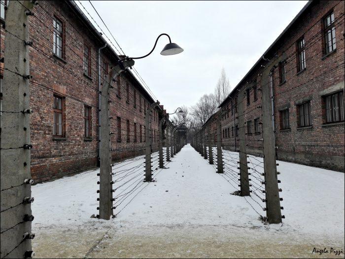 Raggiungere Auschwitz partendo da Cracovia. Sembra che il tempo si sia fermato, tutto è stato lasciato così com'era, compreso il filo spinato tra un blocco e l'altro.