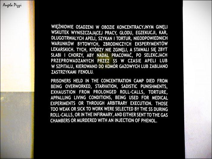 Raggiungere Auschwitz partendo da Cracovia. Targa sulla quale ricordano le torture subite dai progionieri del campo e su come questi morivano a seguito di interminabili ore di lavoro duro, punizioni sadiche. Essi venivano utilizzati come cavie durante esperimenti medici o uccisi durante esecuzioni che avvenivano in maniera arbitraria
